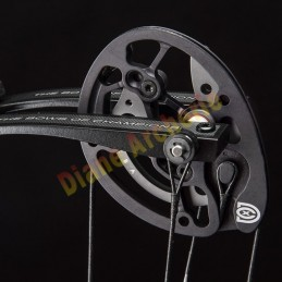 Compound HOYT Invicta 37 DCX anodisé - 2020