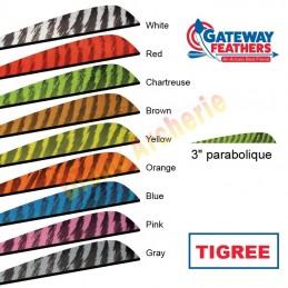 """Plume GATEWAY 3"""" parabolique tigrée"""