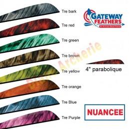 """Plume GATEWAY 4"""" parabolique nuancée"""
