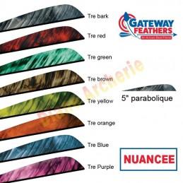 """Plume GATEWAY 5"""" parabolique nuancée"""
