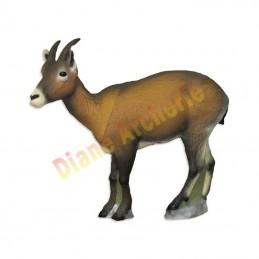 Cible 3D SRT Ibex femelle - Groupe 2