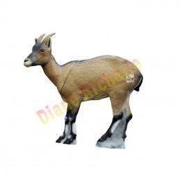 Cible 3D SRT Bouquetin cabra montes femelle - Groupe 2