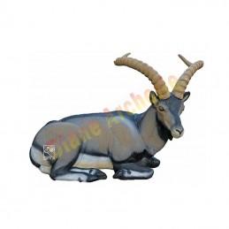 Cible 3D SRT Bouquetin cabra montes couché - Groupe 1