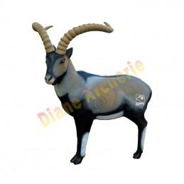 Cible 3D SRT Bouquetin cabra montes - Groupe 1