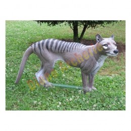 Cible 3D NATUR FOAM Thylacine - Groupes 3/4
